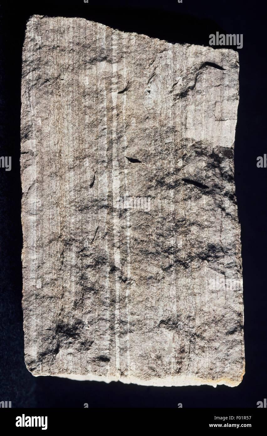 Laminated Dolostone, rock. - Stock Image