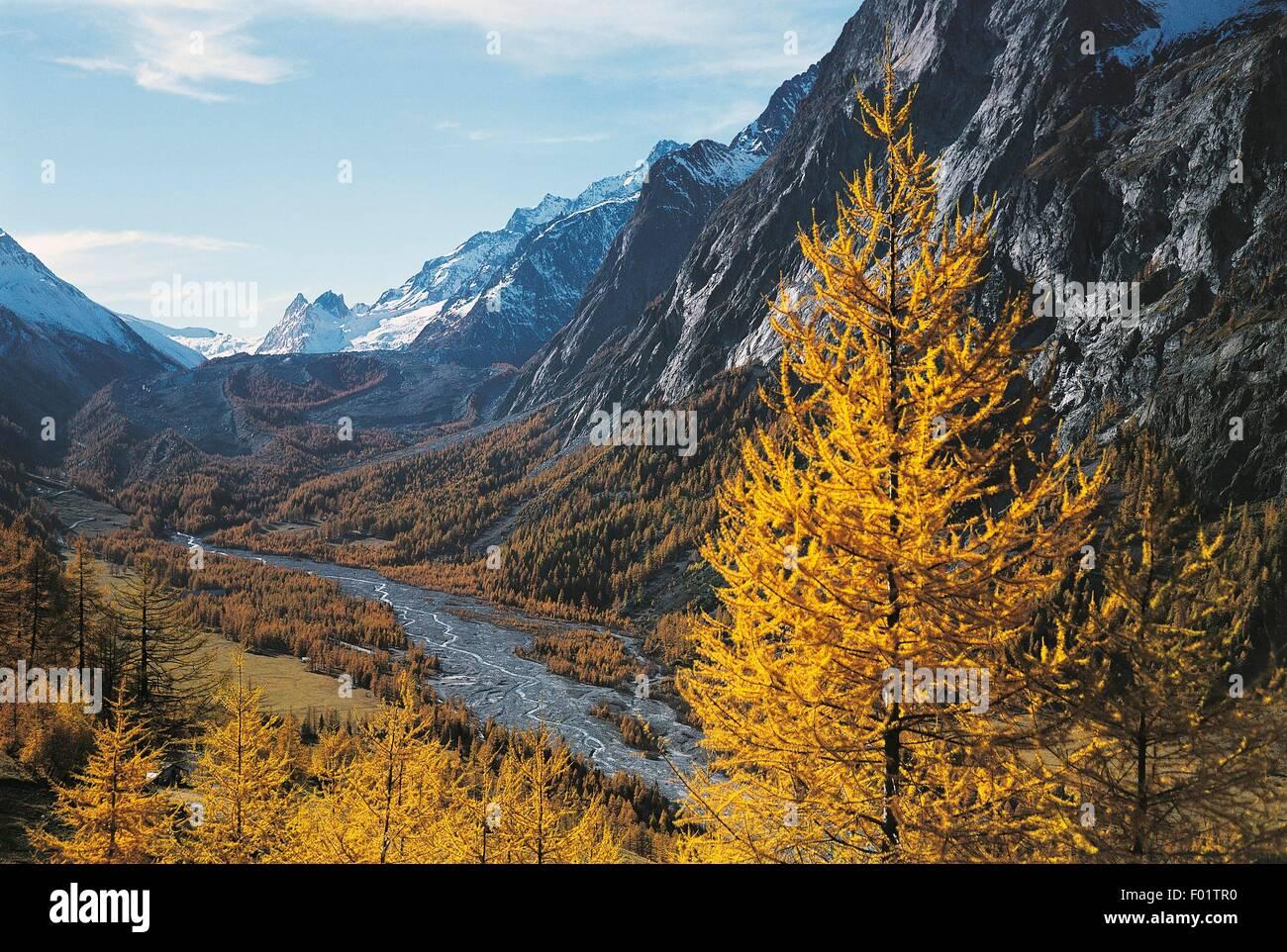 Dora di Veny River, in the background the Miage Glacier, Mont Blanc, Val Veny, Aosta Valley, Italy. - Stock Image