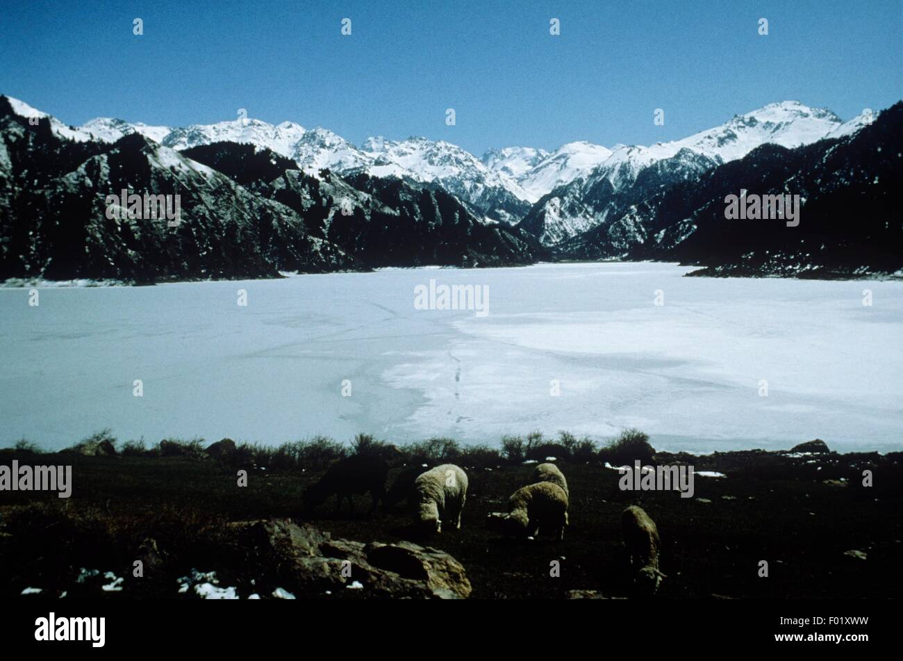 China - Iced Heaven Lake or Tian Chi Lake - Stock Image