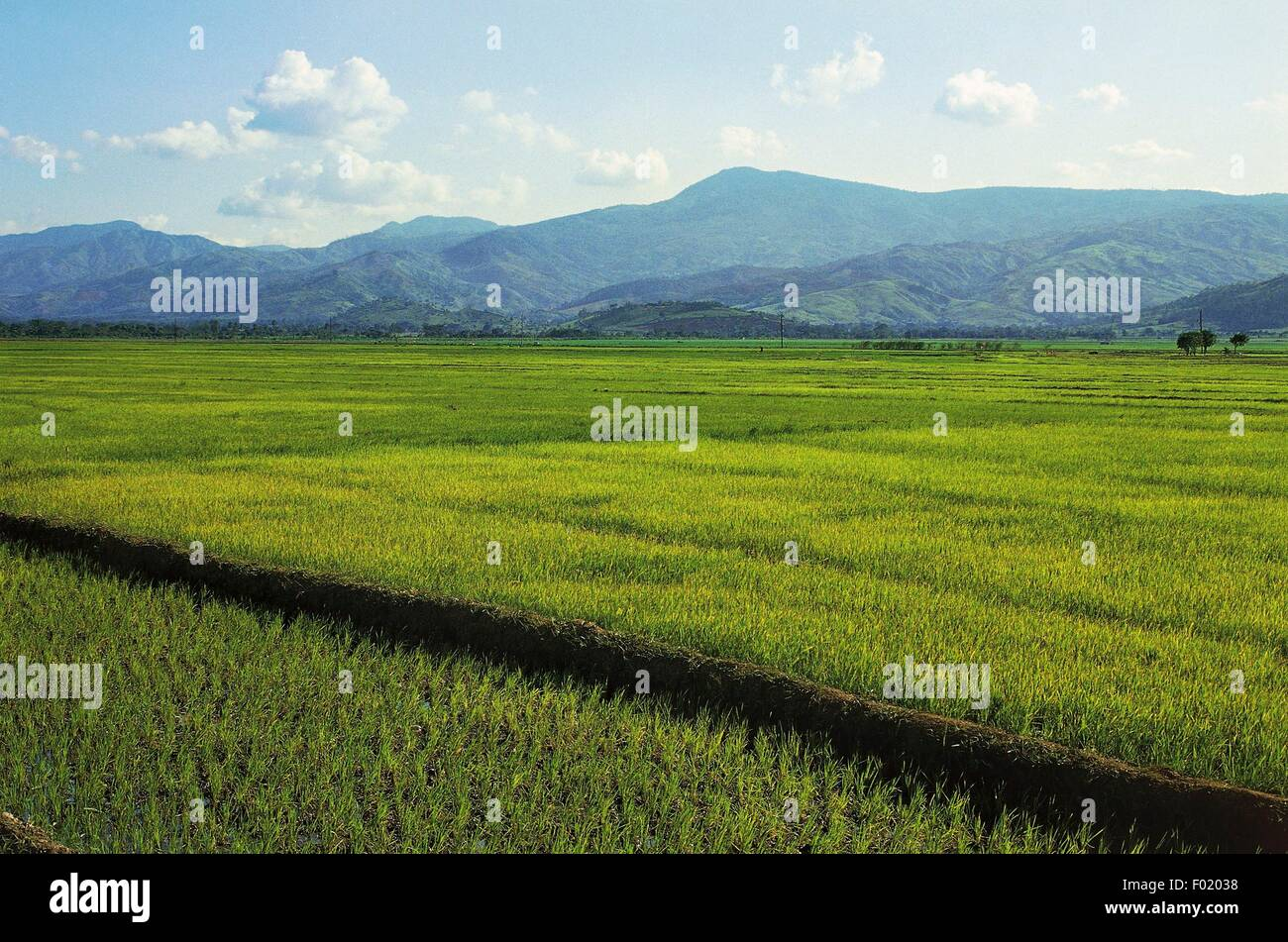 La Vega Real Valley, where the first battle between Europeans and natives occurred, Dominican Republic. - Stock Image