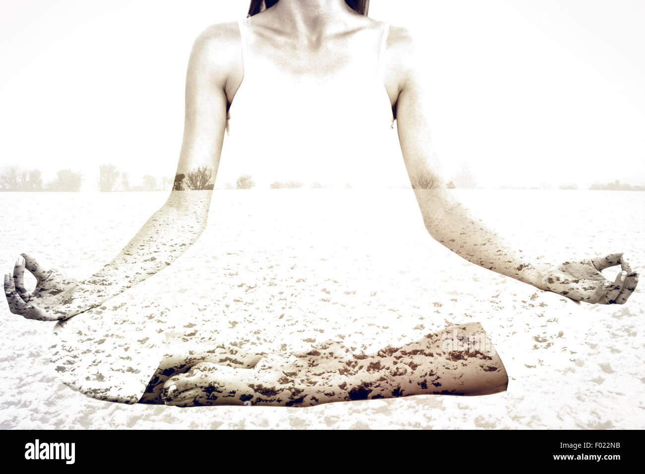 Composite image of toned woman in lotus pose at fitness studio - Stock Image