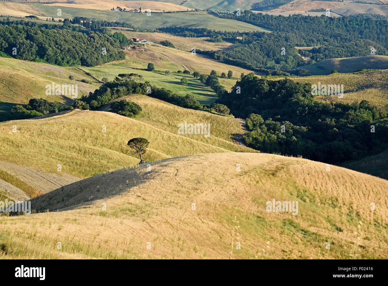 Landscape, Volterra, Province of Pisa, Tuscany, Italy Stock Photo