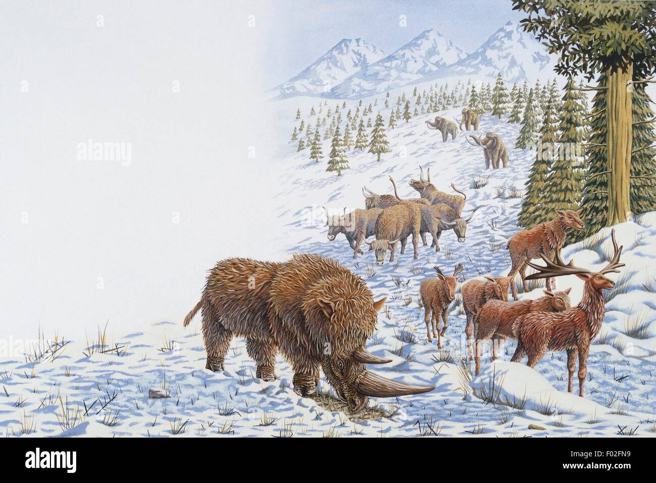 Animals of the Ice Age. Artwork by Mark Stewart. - Stock Image