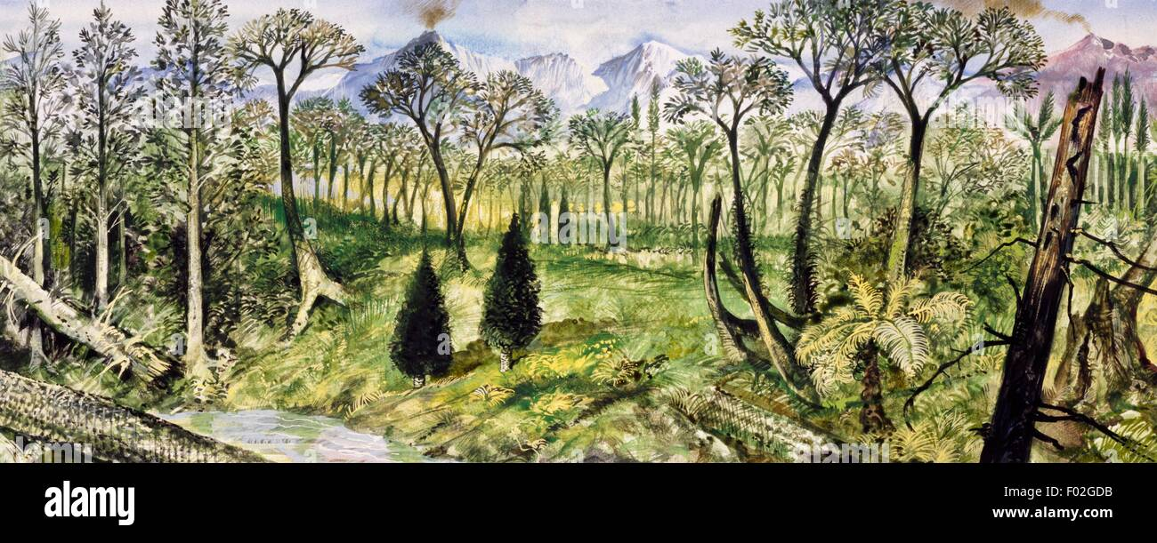 Forest of the Carboniferous Period. Drawing. Stock Photo