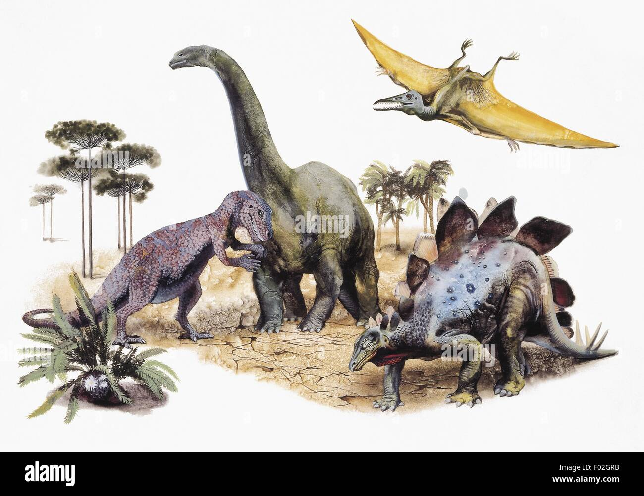 Prehistory - Dinosaurs. Drawing - Stock Image