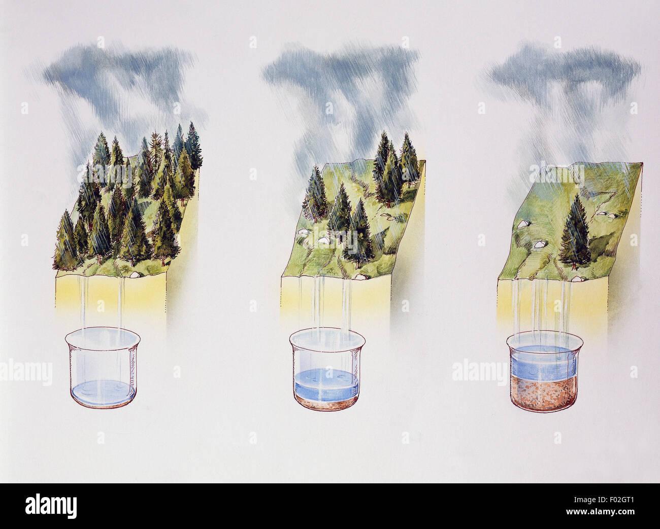 Example of how vegetation density influences soil erosion, drawing. - Stock Image