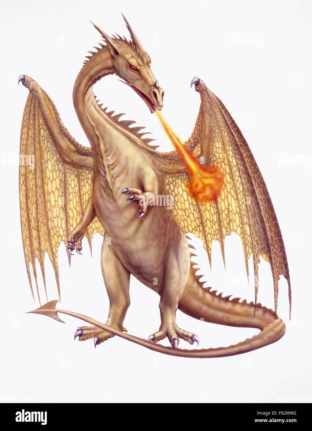Dragon, fantastic animal. Illustration. - Stock Image