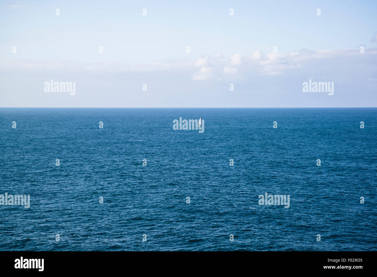 Sailing boat, Watson Bay, The Gap Bluff, Sydney, Australia - Stock Image