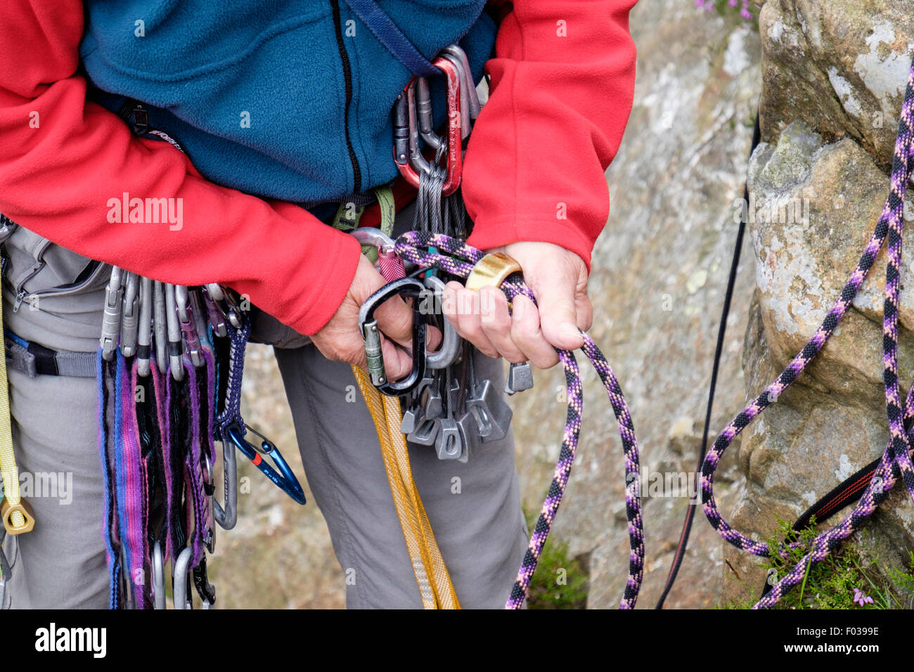 Climber with a climbing rope and belay device rappel descender tying in attaching to a harness karabiner for belaying. - Stock Image
