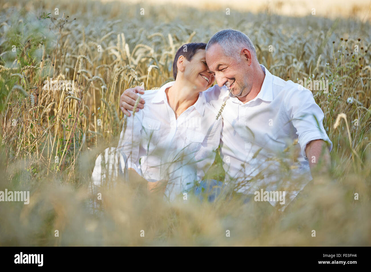 Happy senior couple sitting in a wheat field in summer - Stock Image