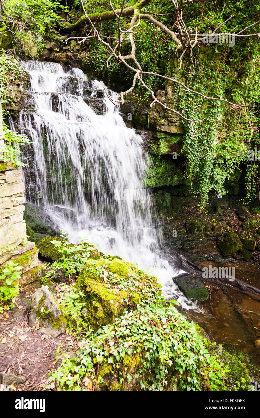 Wensley Waterfall Wensleydale river ouse North Yorkshire Dales UK England Stock Photo