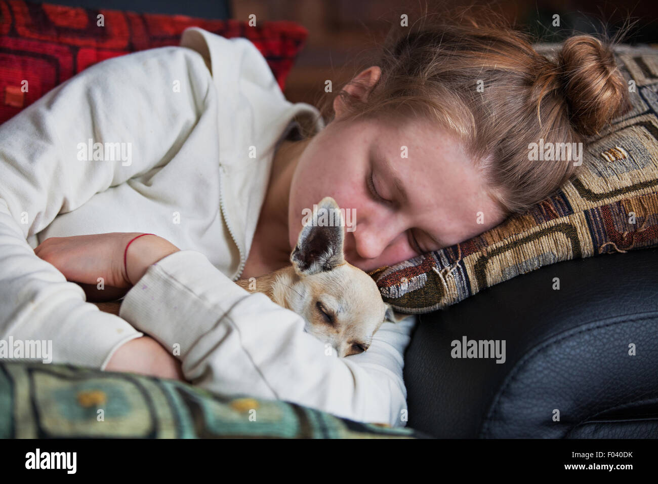 Sleeping girl with a little dog - Stock Image