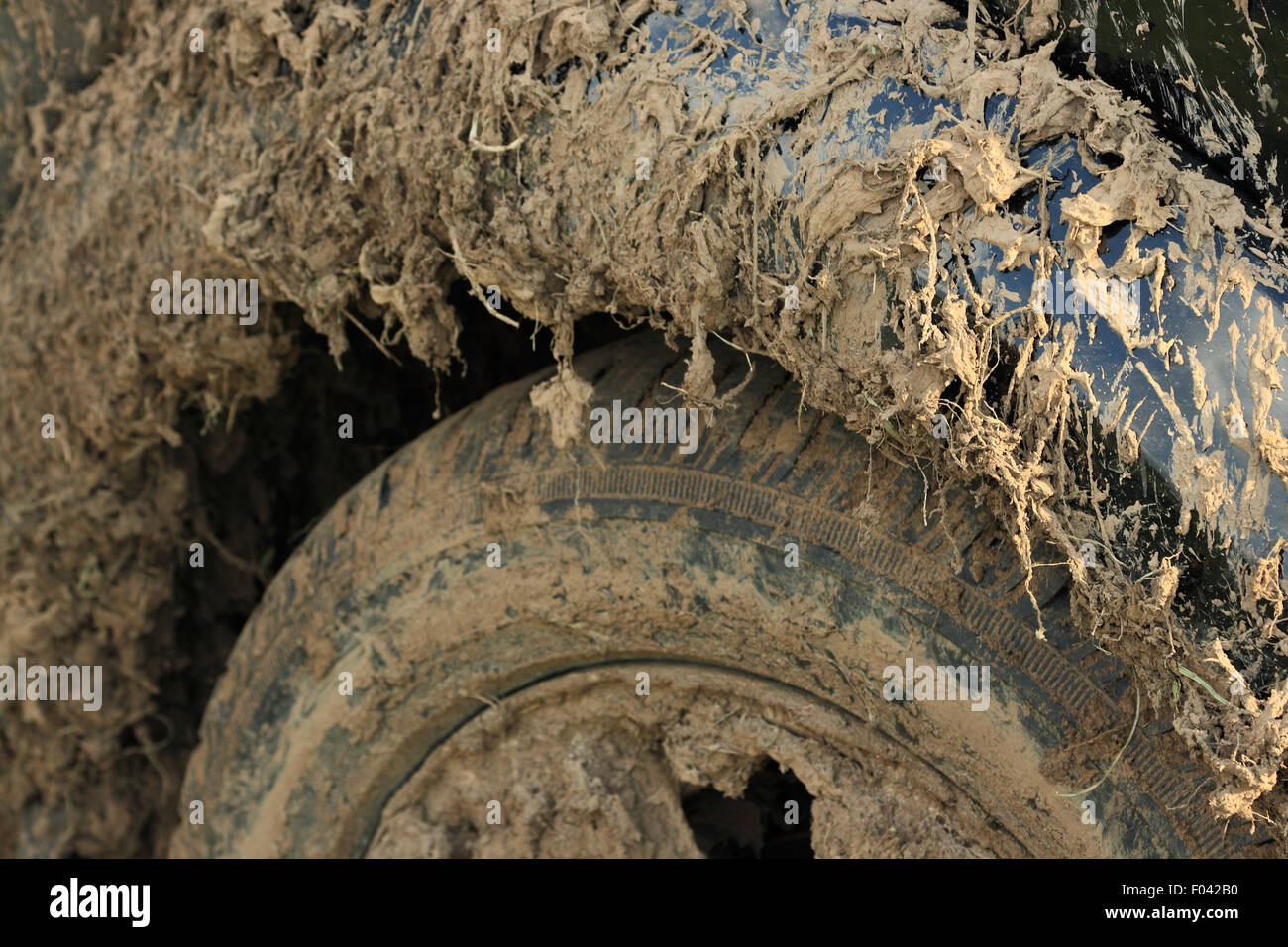https://c8.alamy.com/comp/F042B0/close-up-photo-of-a-car-covered-with-mud-shallow-depth-of-field-F042B0.jpg