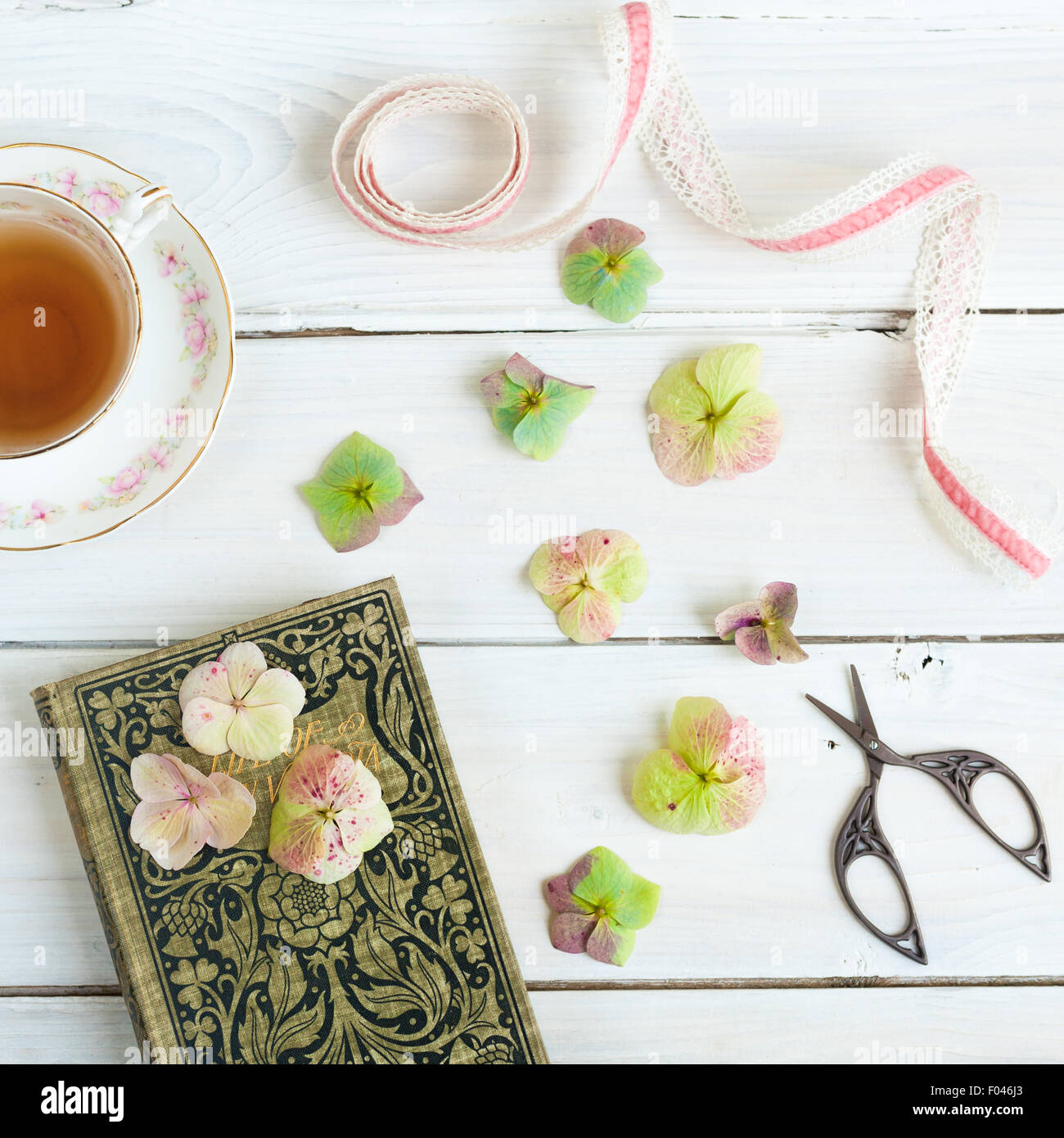 still life with teacup, old book, hydrangea flowers, ribbon and embroidery scissors - Stock Image
