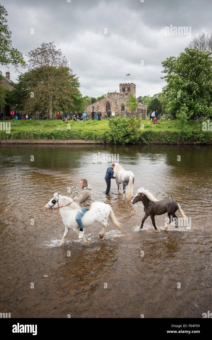 Appleby horse fair, Appleby-in-Westmorland, Cumbria. - Stock Image
