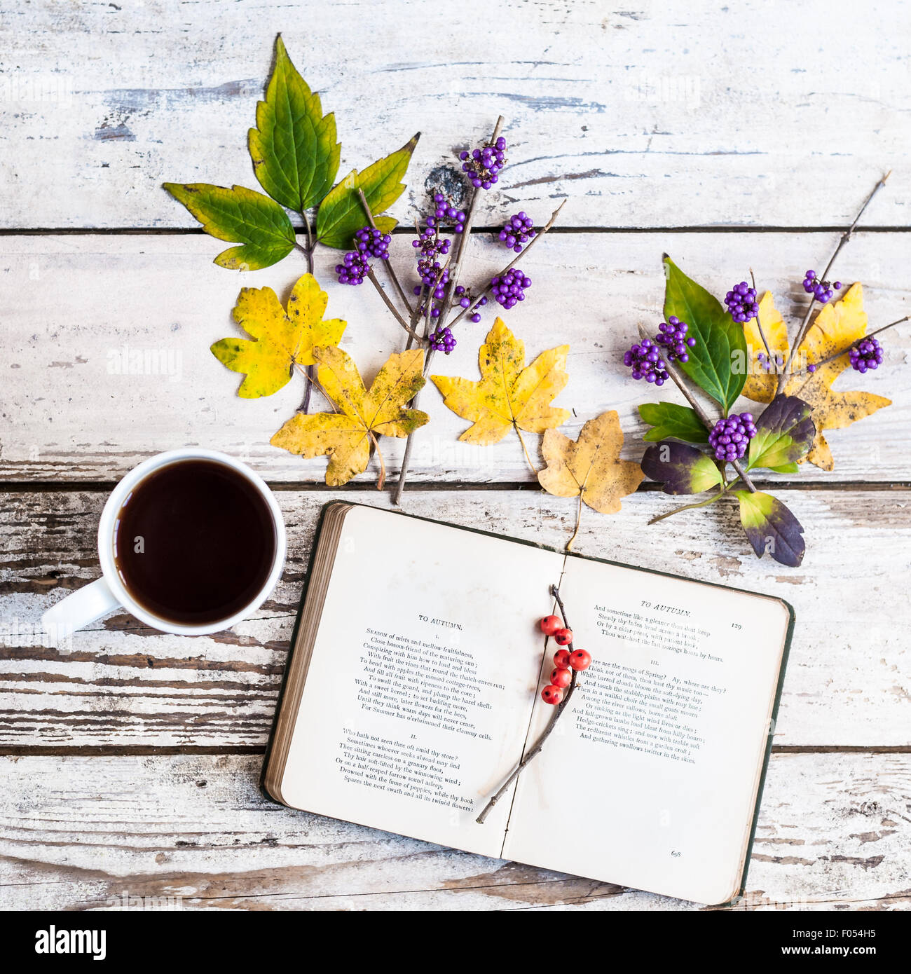 book open to poem To Autumn by J. Keats, with mug of coffee, leaves and berries - Stock Image