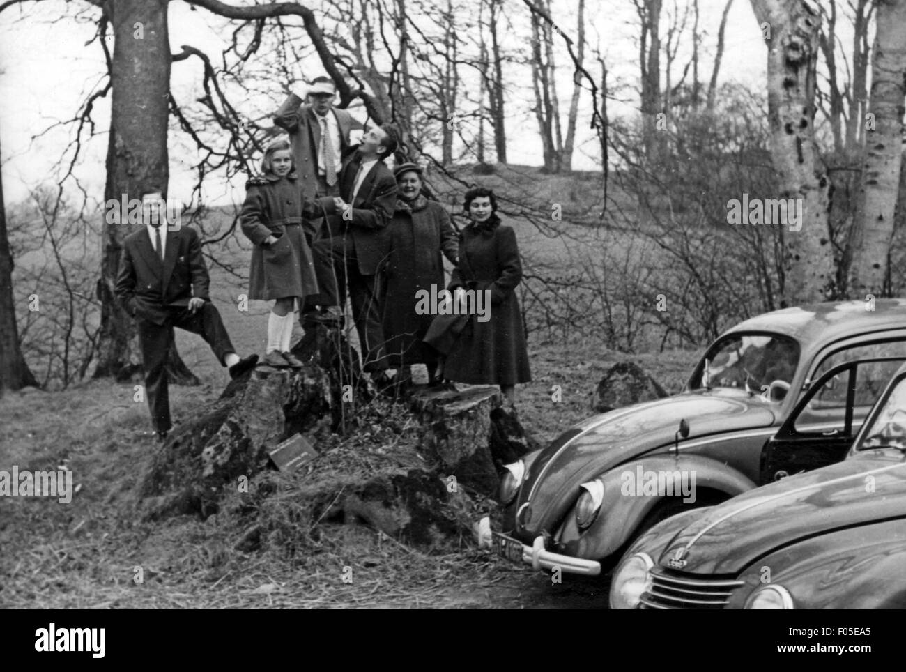 leisure, excursion, family having outing with VW Beetle type 1 and DKW F89, Germany, 1948 - 1956, 20th century, - Stock Image