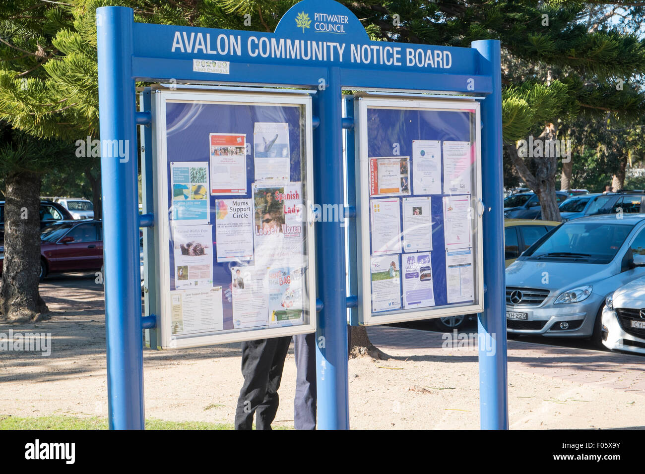 Avalon community notice board in the suburb of Avalon on sydney's northern beaches,New South Wales,Australia - Stock Image