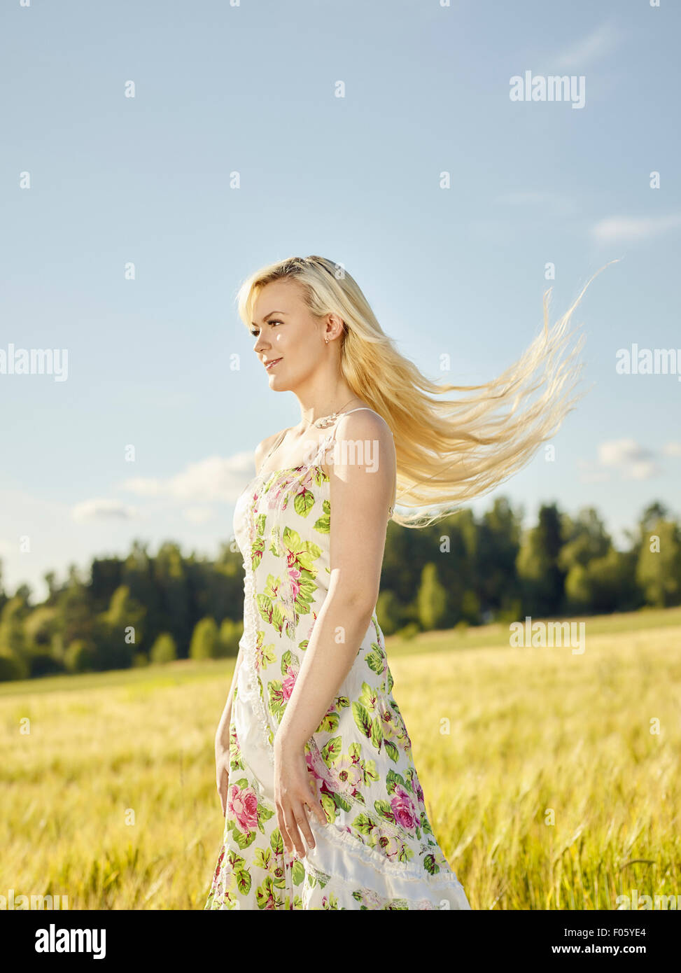 Beautiful fair skin blonde wearing a floral dress, summer sunlight, barley field on background - Stock Image