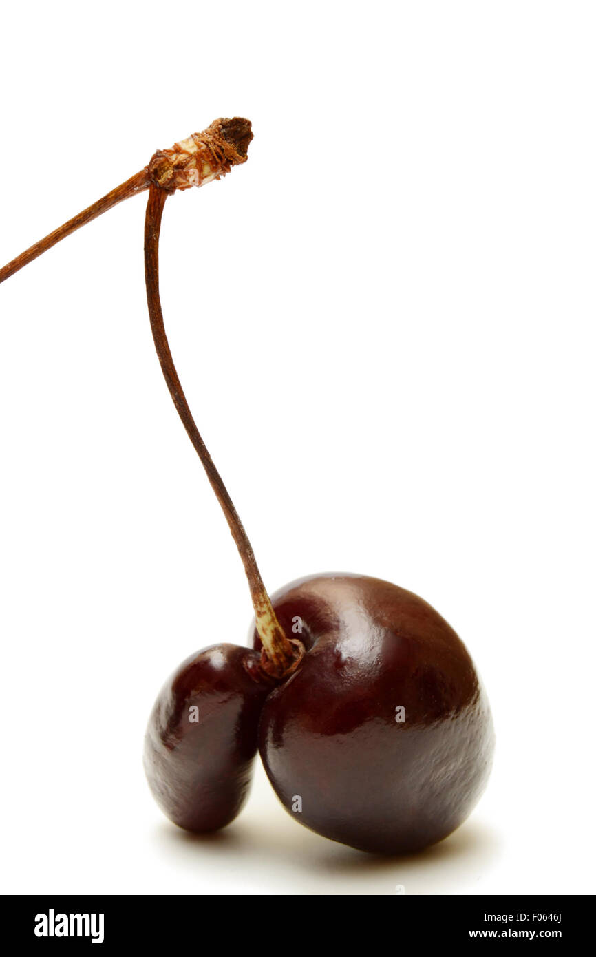 Cherry fruit fused with a white background. Close-up. - Stock Image