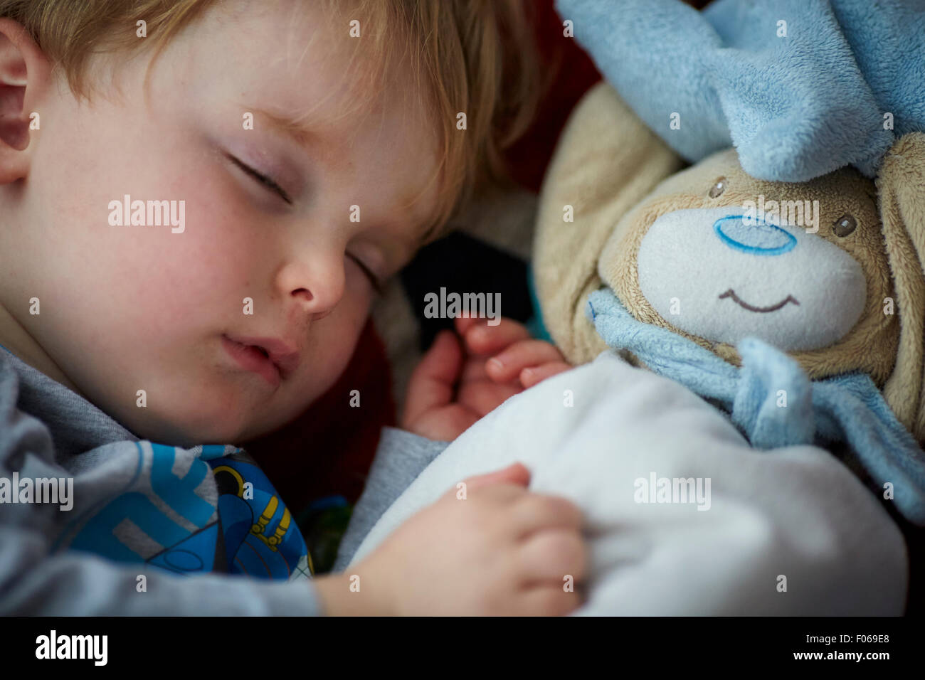 Small child boy asleep with his teddy bear as confuter   Baby babies youths youngster  children children's toddlers - Stock Image