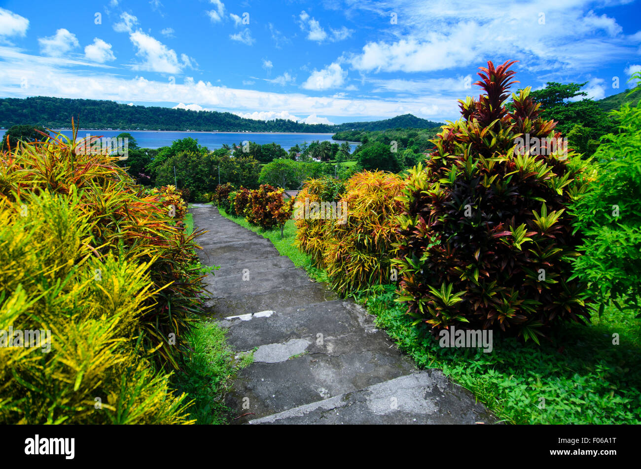 Colourful plants on the pathway to Fort Belgica, Banda Neira, Indonesia, The Spice Islands Stock Photo
