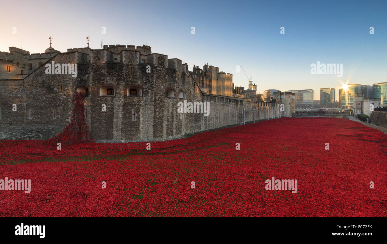 The Tower of London and the 'Blood Swept Lands and Seas of Red' installation at sunrise in November 2014 - Stock Image