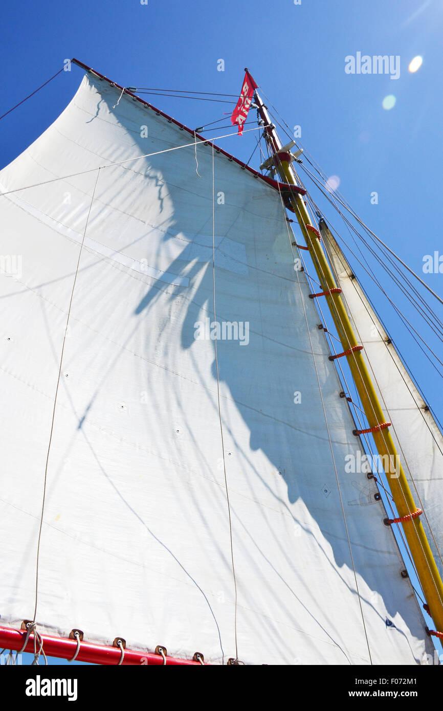 Sail of a sailing boat - Stock Image
