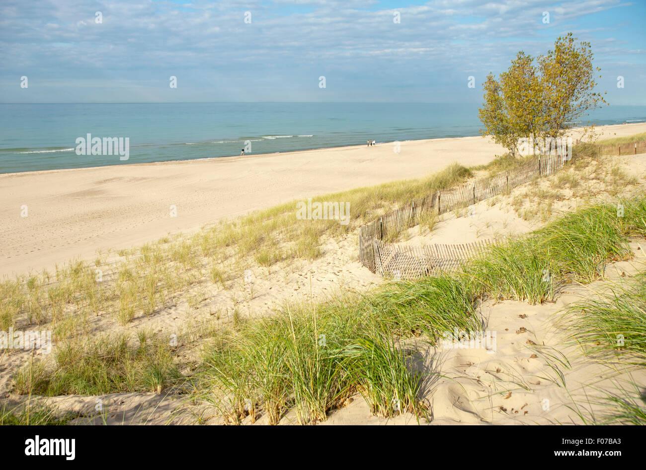 Indiana Dune State Park Beach