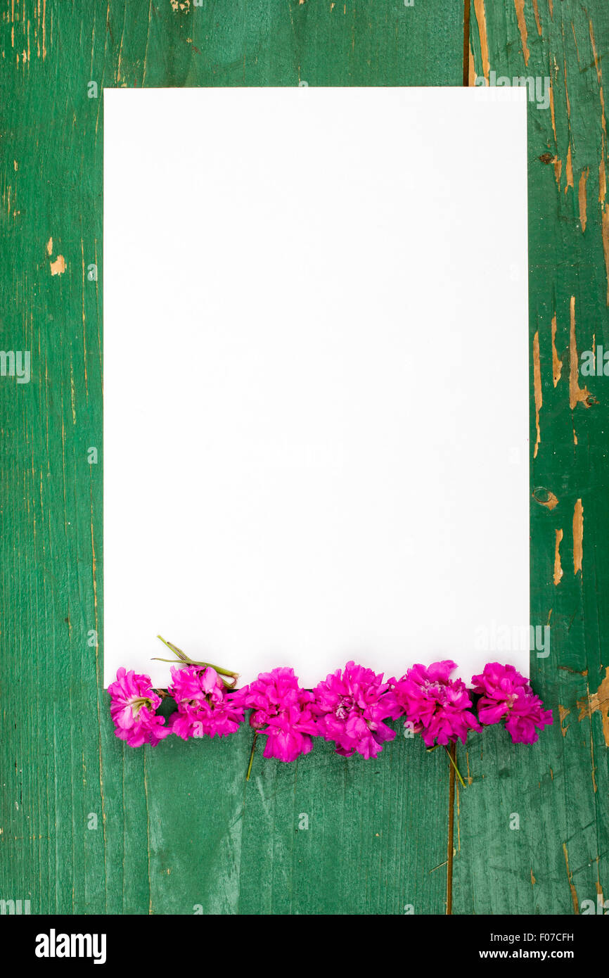 flowers on vintage wooden planks with blank paper stock image