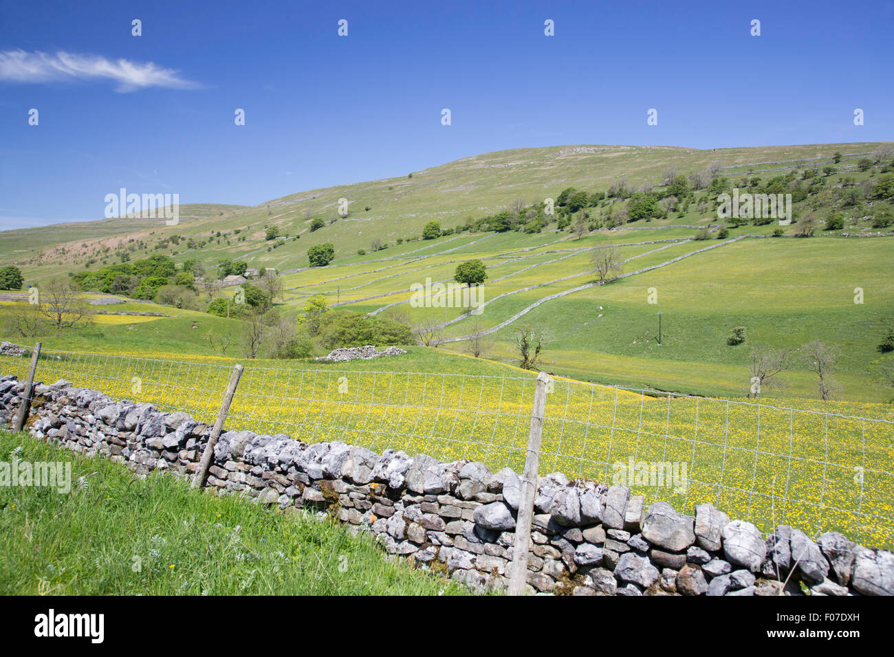 Farming field systems in Upper Wharfdale, ' Yorkshire Dales National Park, England, UK - Stock Image