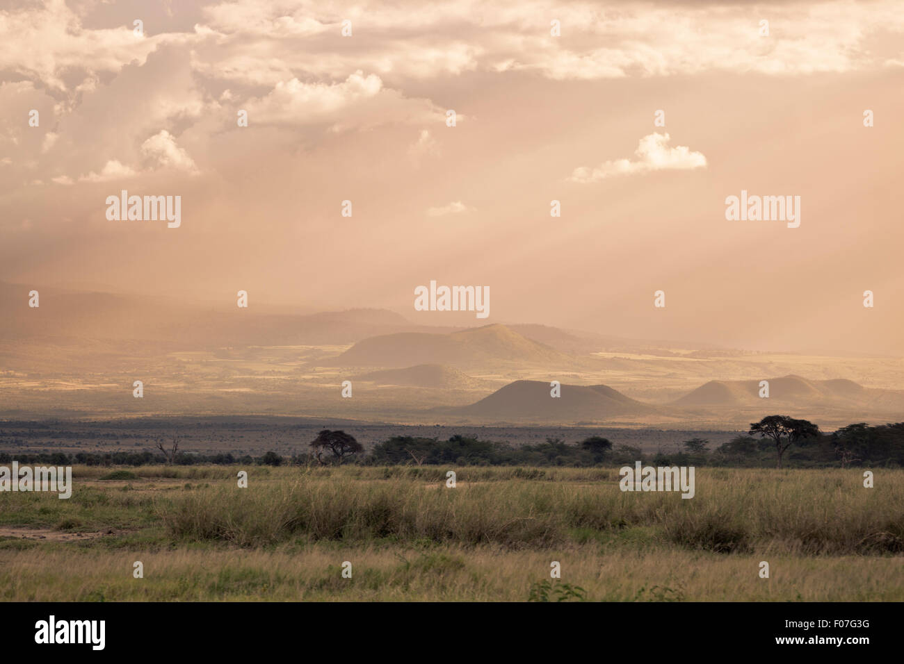 Volcanic craters on the flank of Mount Kilimanjaro seen from Amboseli National Park in Kenya with beautiful evening - Stock Image