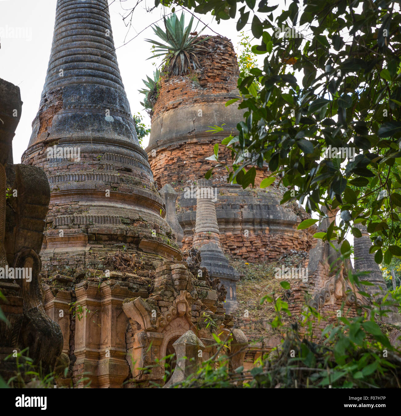 Overgrown 12th century brick stupas in Nyaung Ohak section of the ancient ruins at Indein, Inle Lake, Shan State, - Stock Image