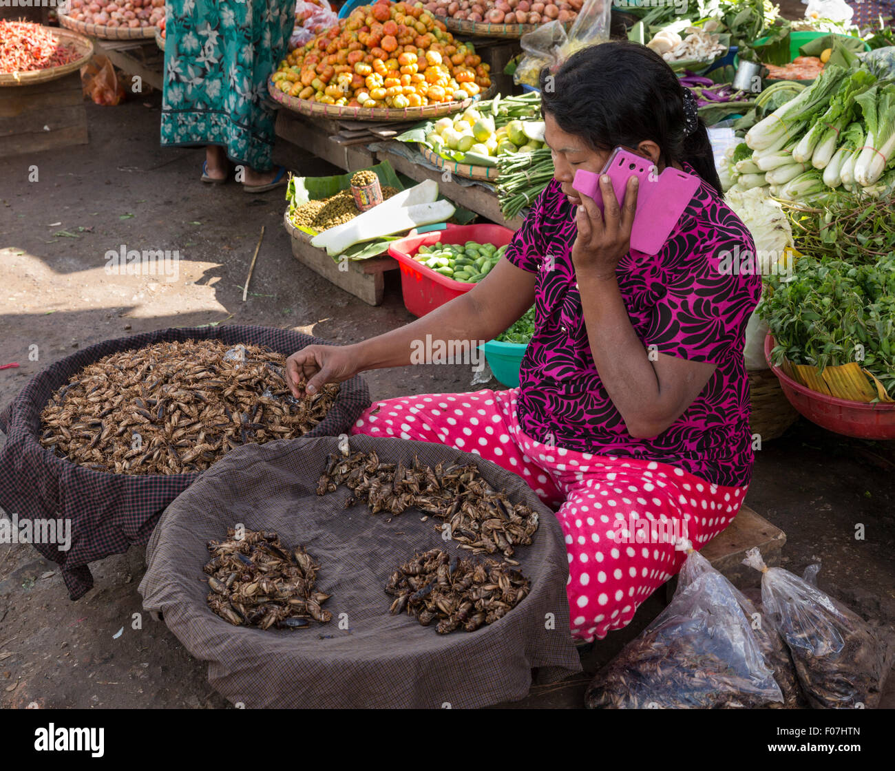 Woman chats on mobile phone while selling fried crickets at the market in Pyin Oo Lwin, the historic hill station - Stock Image