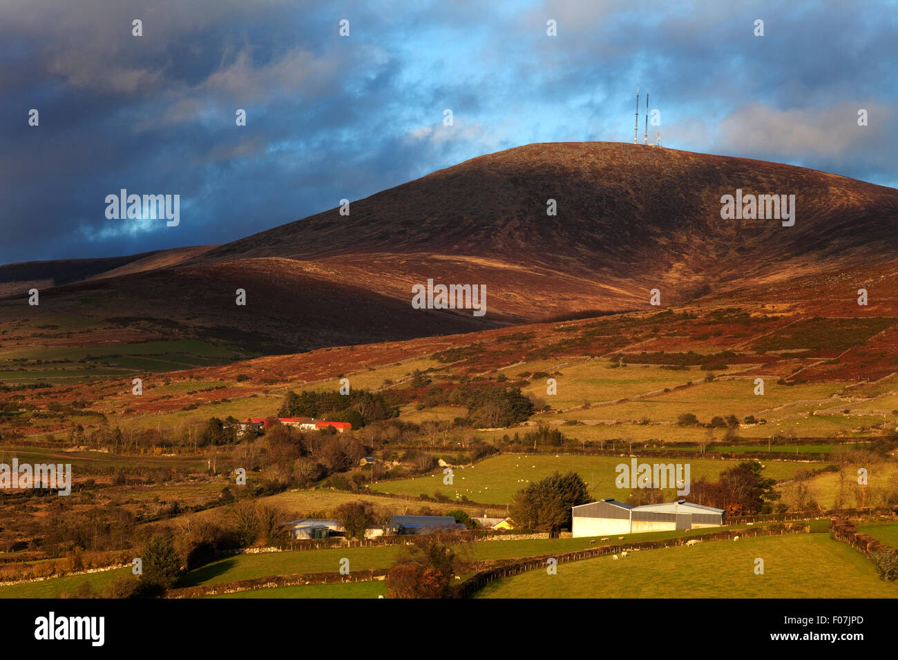 Mount Leinster, 796 metres it's the highest of the Blackstairs Mountains, On the border of County Wexford (and - Stock Image