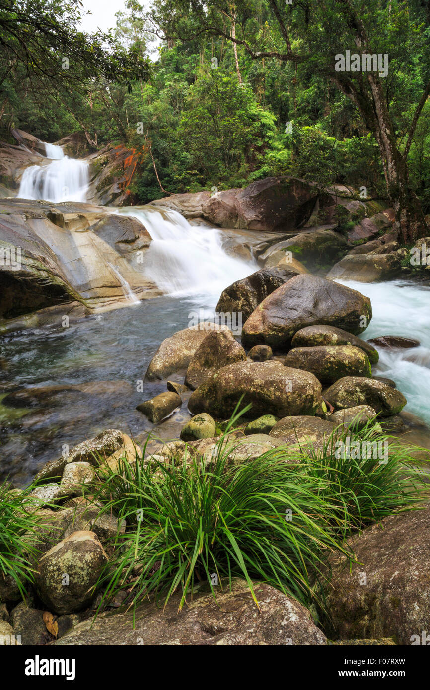 Josephine Falls in  Wooroonooran National Park, near Bartle Frere, 75km from Cairns. - Stock Image