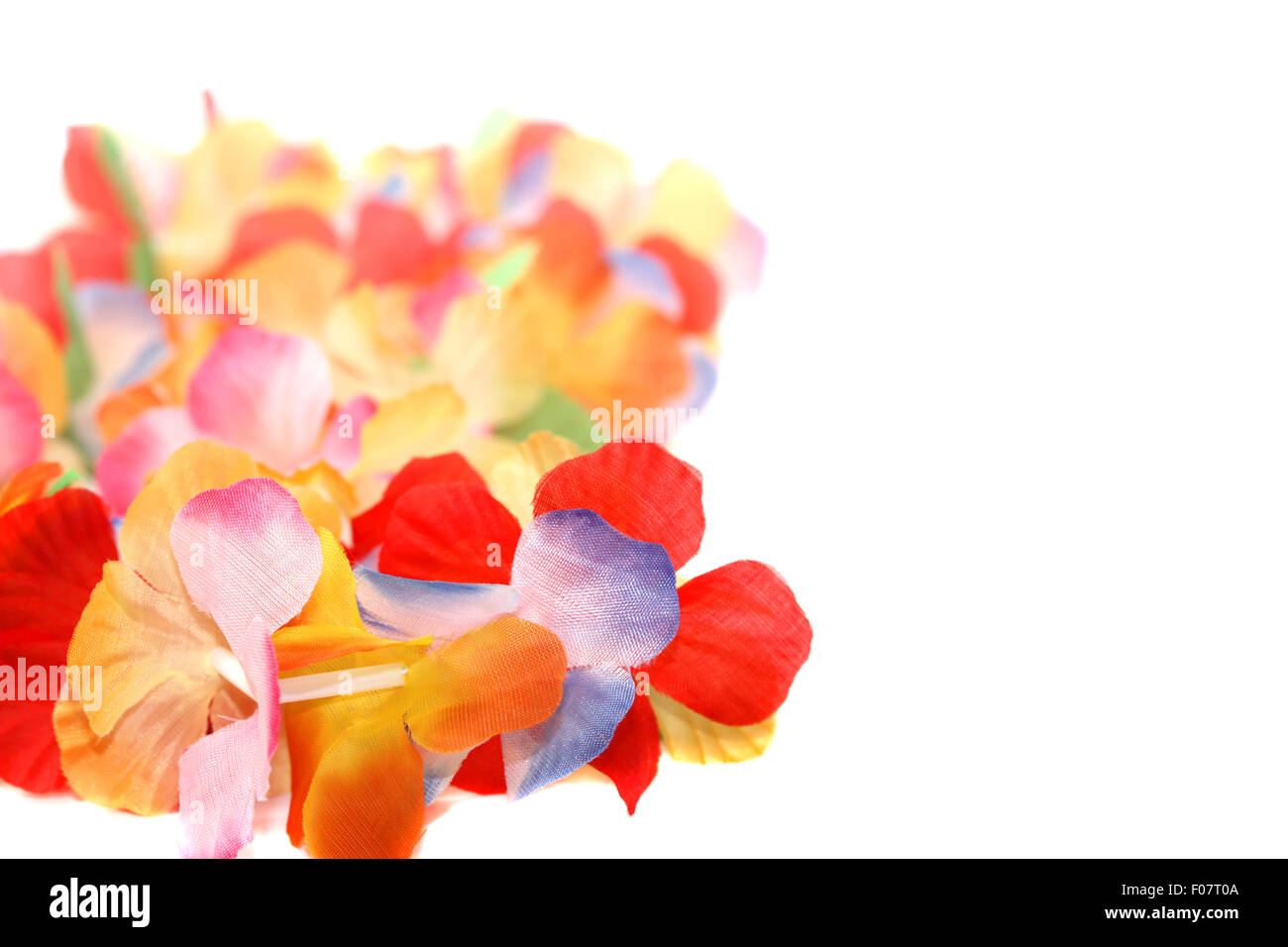 Traditional necklace stock photos traditional necklace stock traditional hawaiian floral necklace stock image izmirmasajfo
