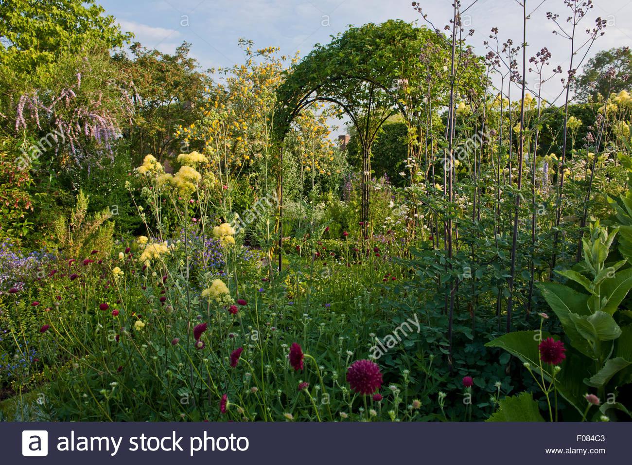 mixed herbs and perennials - Stock Image