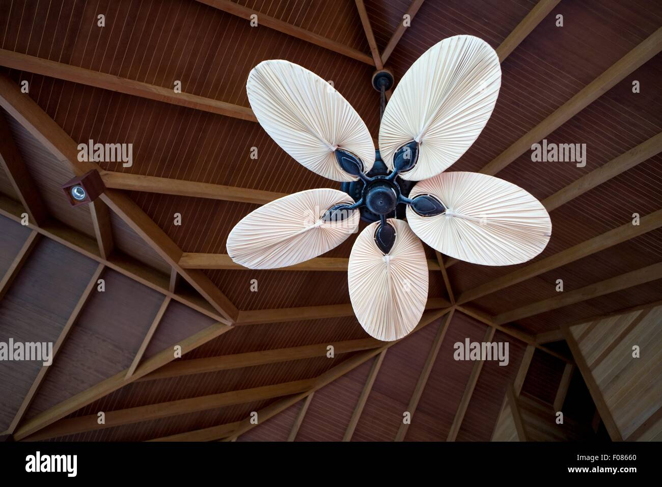 Ceiling fan in the dhigufinolhu island resort maldives low angle ceiling fan in the dhigufinolhu island resort maldives low angle view aloadofball Images