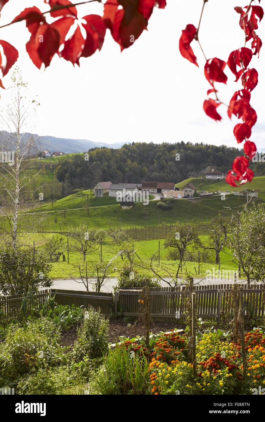 View of landscape from tavern in Styria, Austria Stock Photo