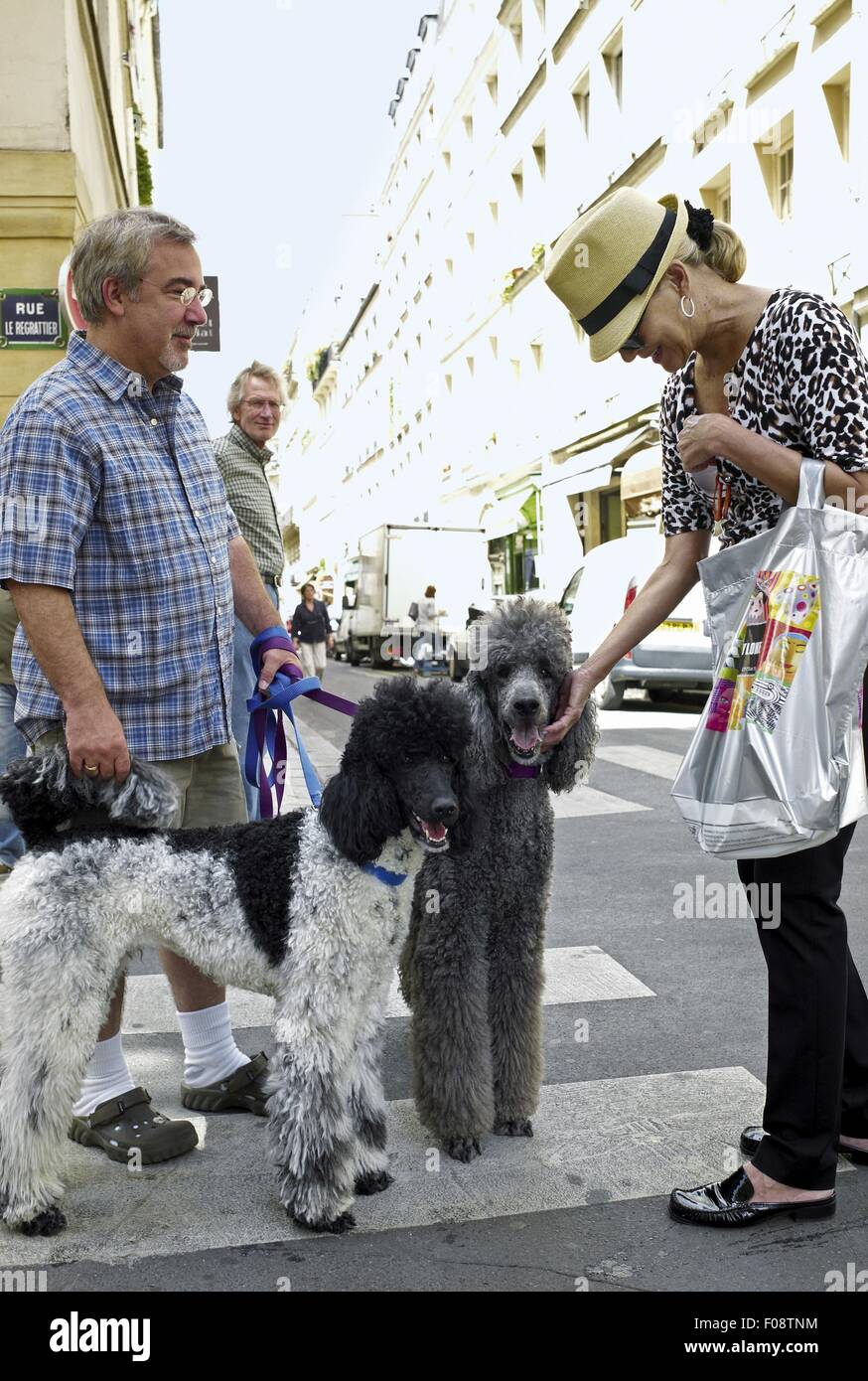 Man and woman standing with poodles on street, Ile Saint-Louis Island, Paris, France - Stock Image