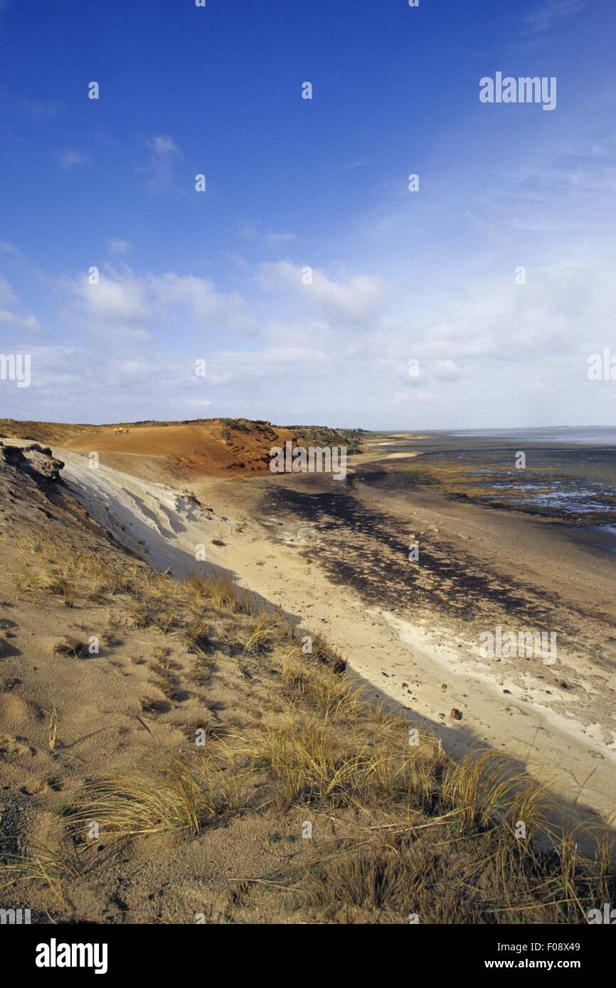 View of Rotes Kliff in Morsum, Sylt, Germany - Stock Image