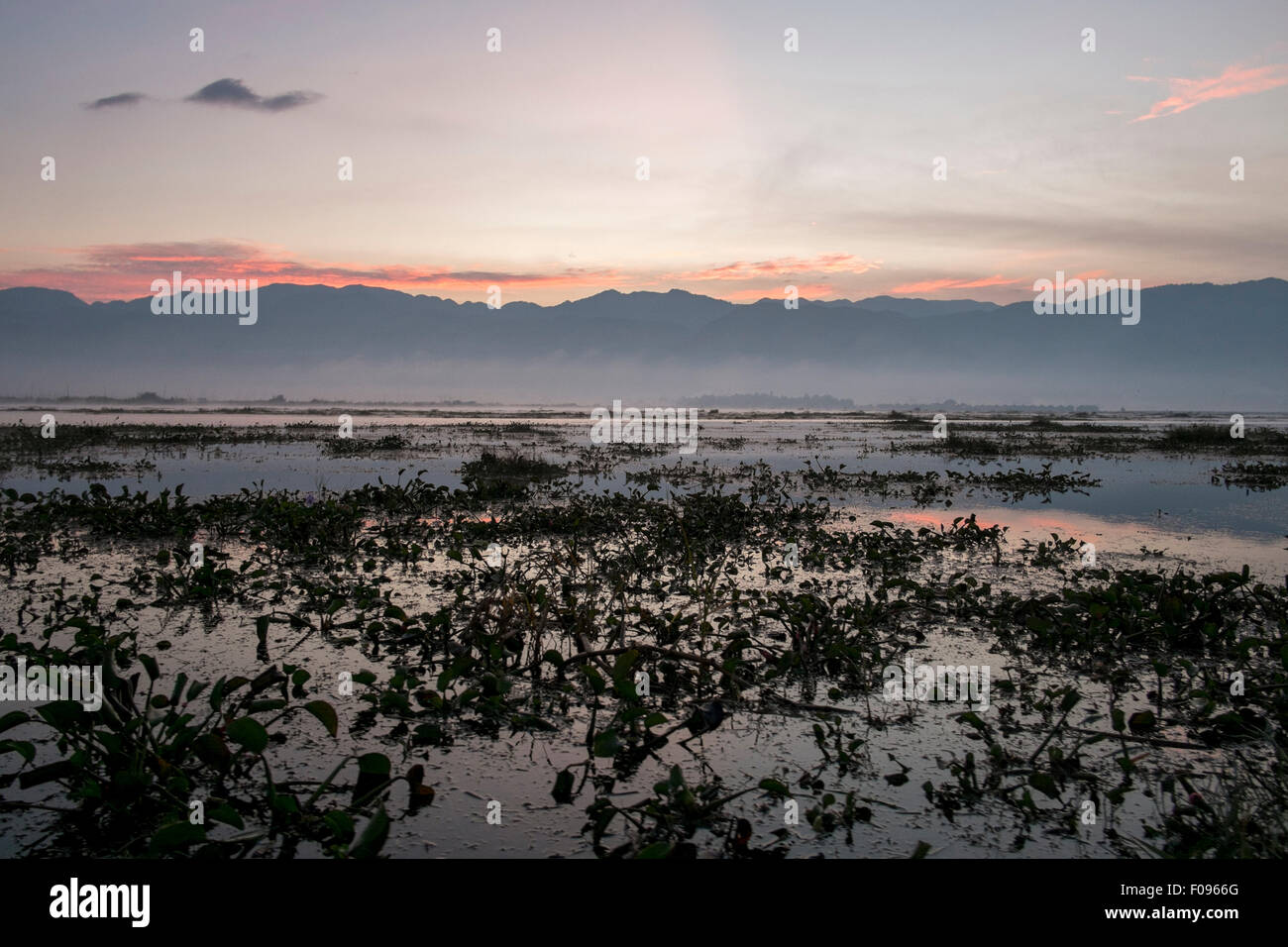 Inle Lake , Myanmar , at sunrise - Stock Image