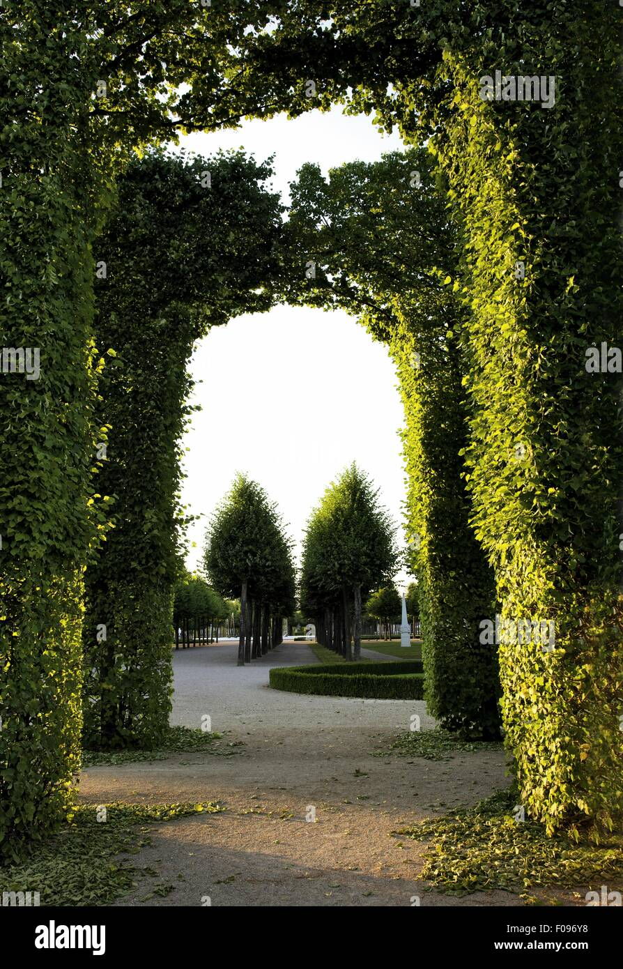 Topiary in garden of Schwetzingen Palace in Heidelberg, Baden-Wurttemberg, Germany - Stock Image