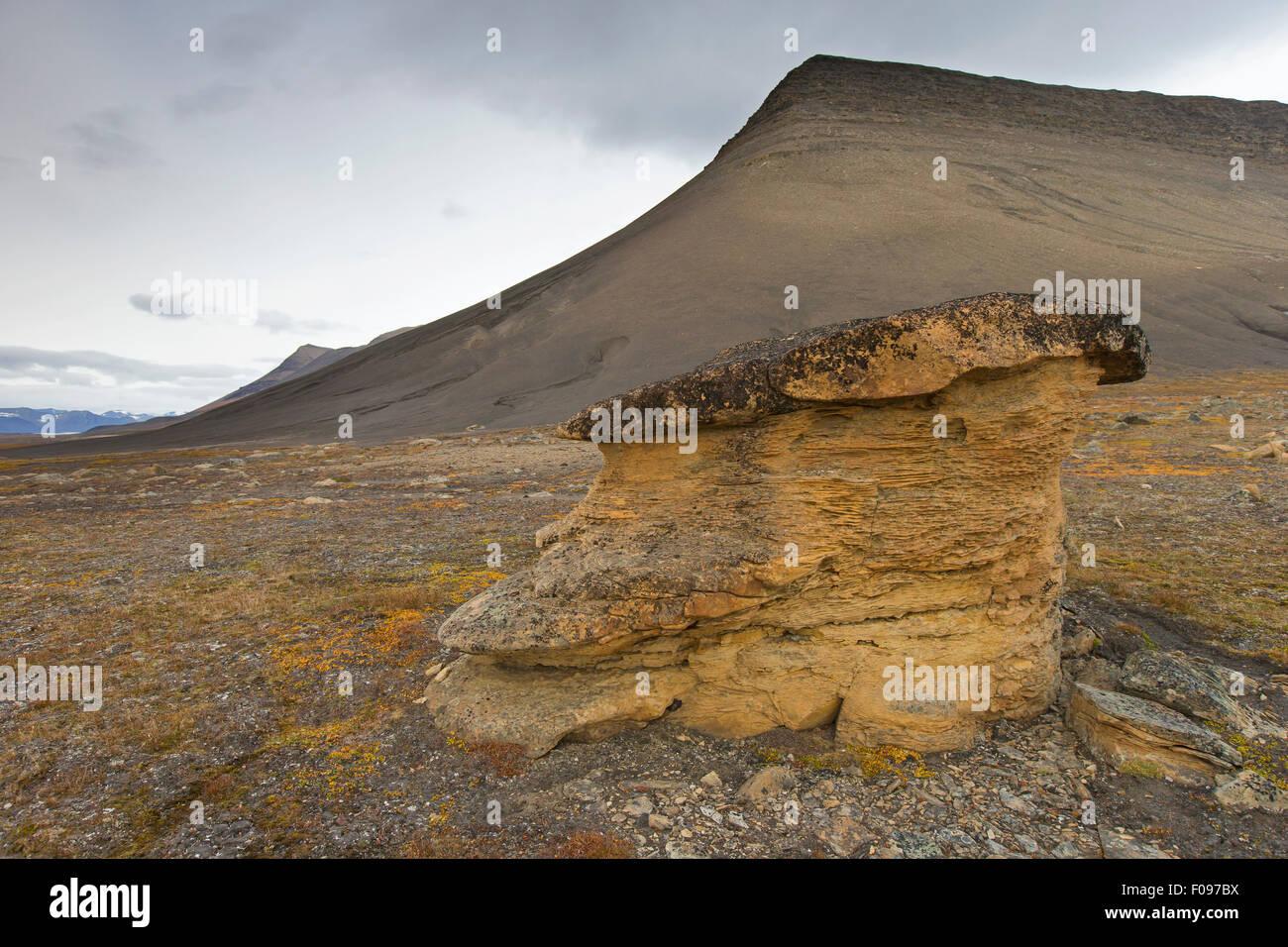 Festningen sandstone rock on the beach of Boltodden, Kvalvagen, Svalbard / Spitsbergen, Norway - Stock Image