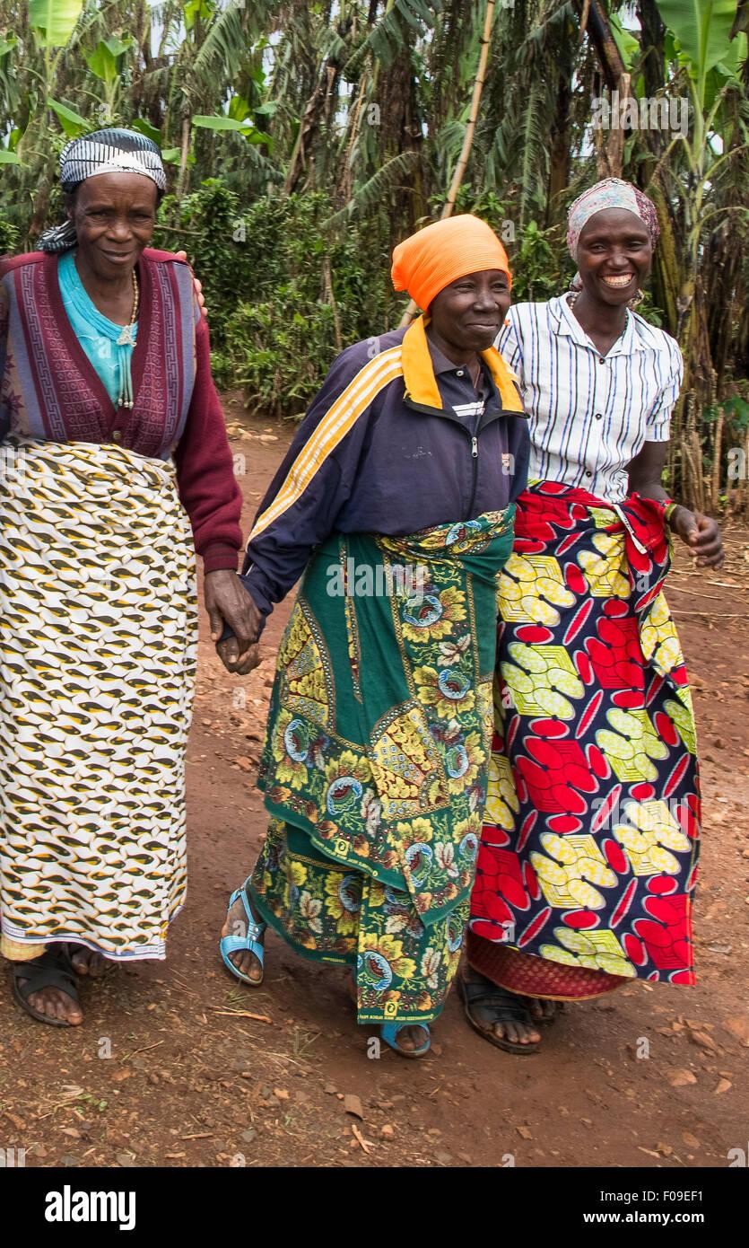 Genocide widows coffee collective, Lake Kivu region, Rwanda - Stock Image