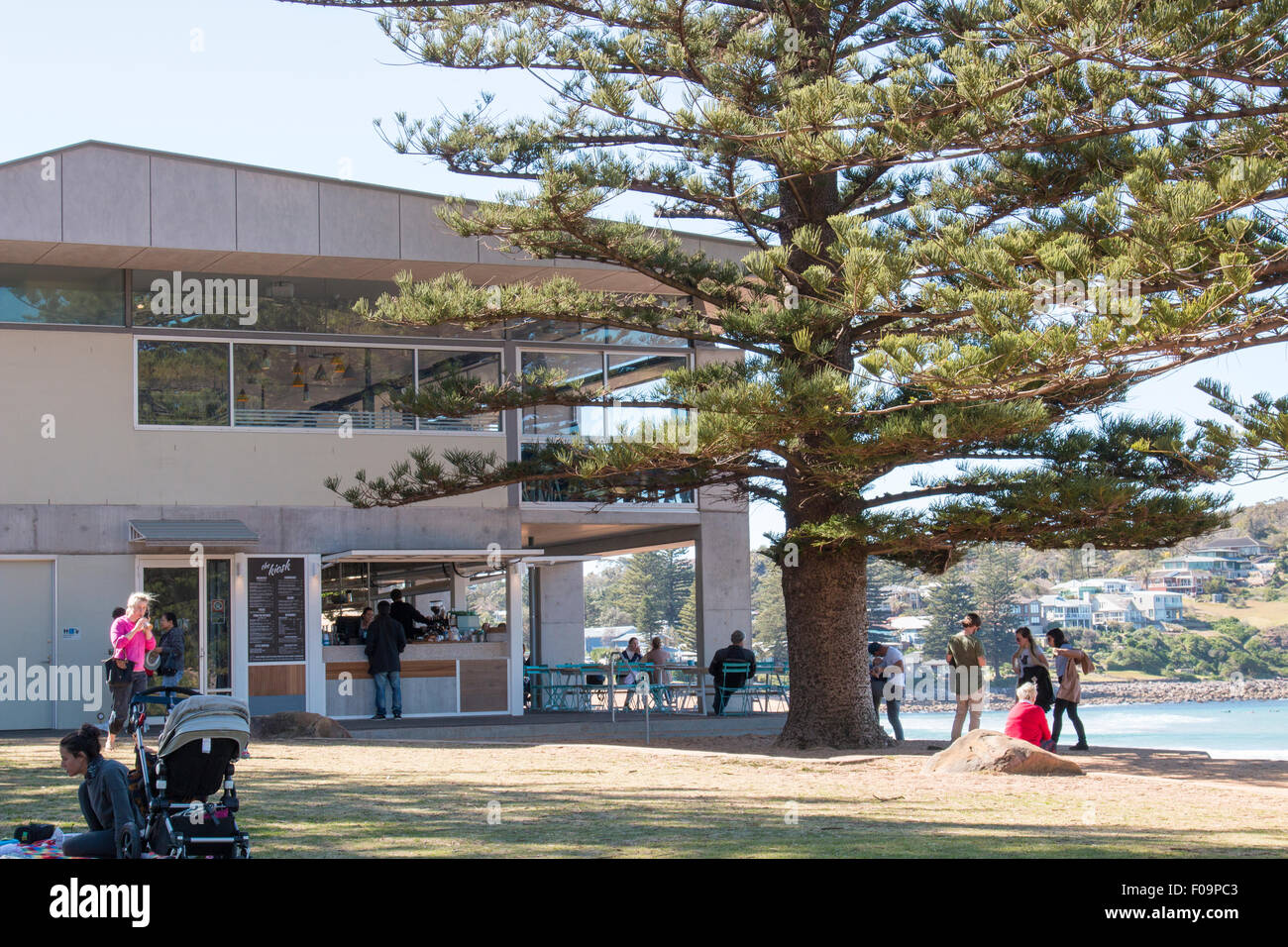 Avalon Beach surf life saving club and cafe coffee shop, new