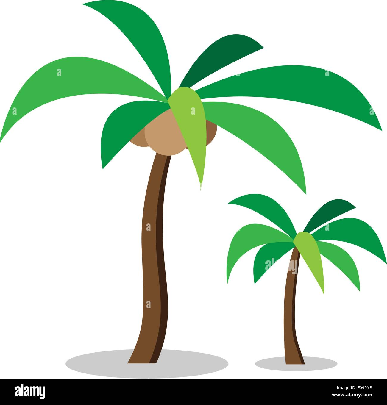 Two coconut trees with coconut ,vector Stock Vector Art ...