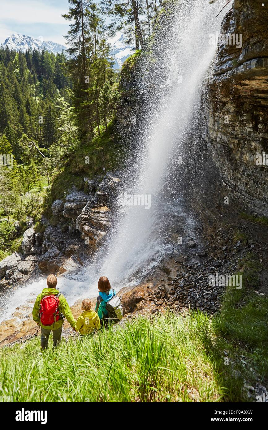 Young family in forest, standing, watching waterfall, rear view - Stock Image