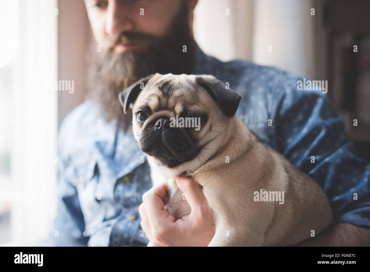 Young bearded man carrying dog in arms Stock Photo